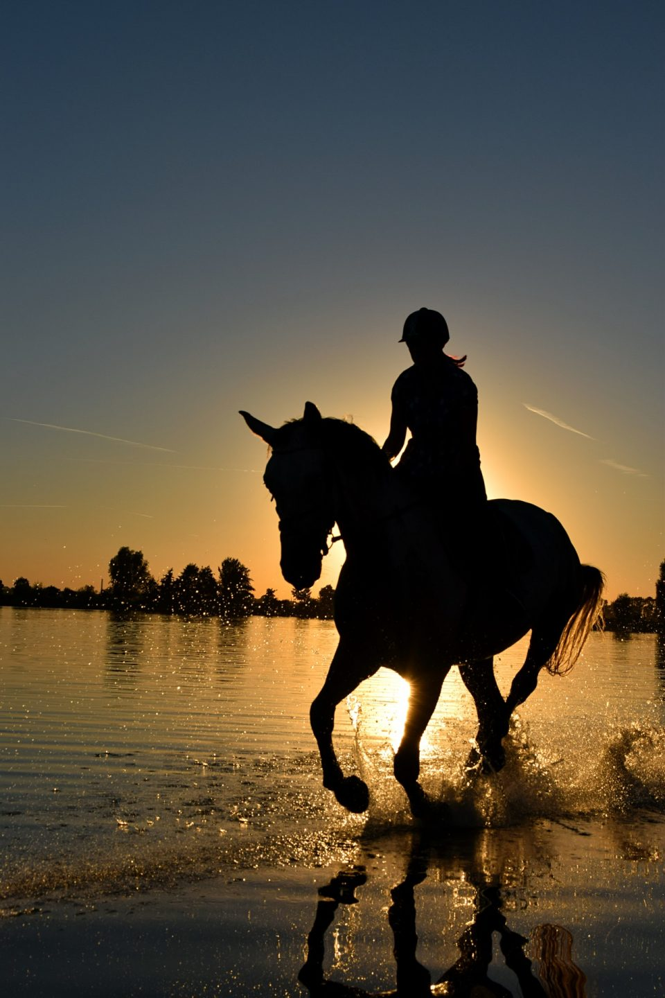silhouette-of-person-riding-horse-on-body-of-water-under-210237